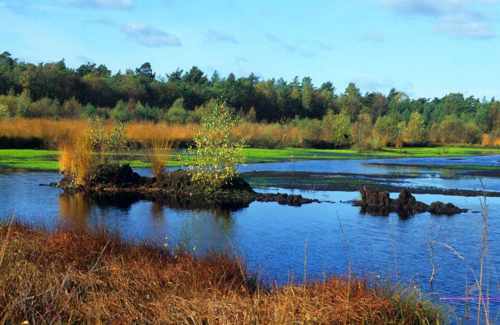 Herbststimmung im Grambower Moor
